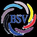 BSV Kisdorf